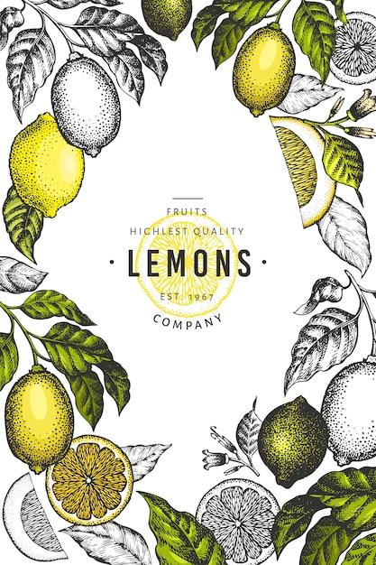 Plantilla de marco de árbol de limón. dibujado a mano ilustración de frutas. Vector Premium