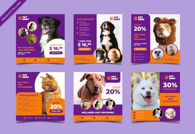 Plantilla de publicación de redes sociales de tienda de mascotas Vector Premium