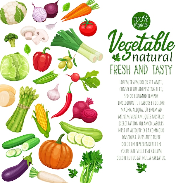 Plantilla de verduras Vector Premium