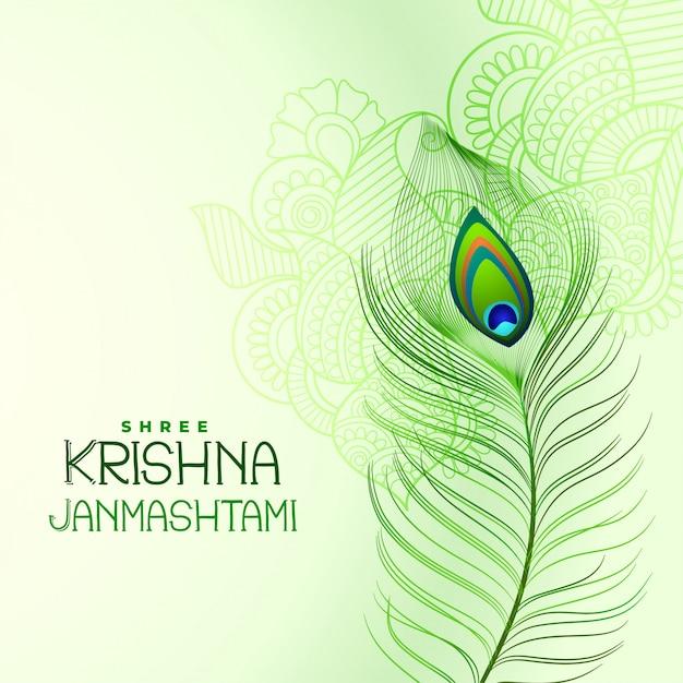 Pluma de pavo real para shree krishna janmashtami vector gratuito
