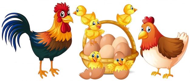 Pollos y pollitos con canasta de huevos. Vector Premium