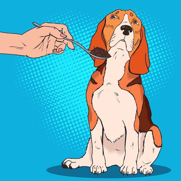 Pop art beagle se niega a comer. perro triste no quiere quitarle la comida a los humanos. Vector Premium