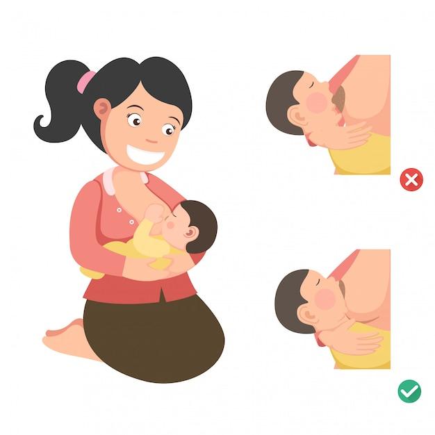 Posición correcta de lactancia materna. Vector Premium