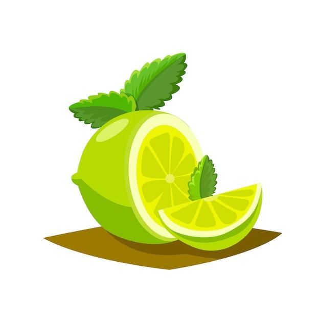 Póster de frutas de lima en estilo de dibujos animados que muestra la mitad y la totalidad de cítricos jugosos frescos vector gratuito