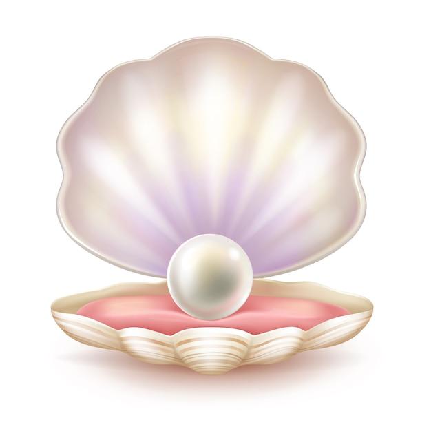Preciosa perla en cáscara abierta. vector gratuito