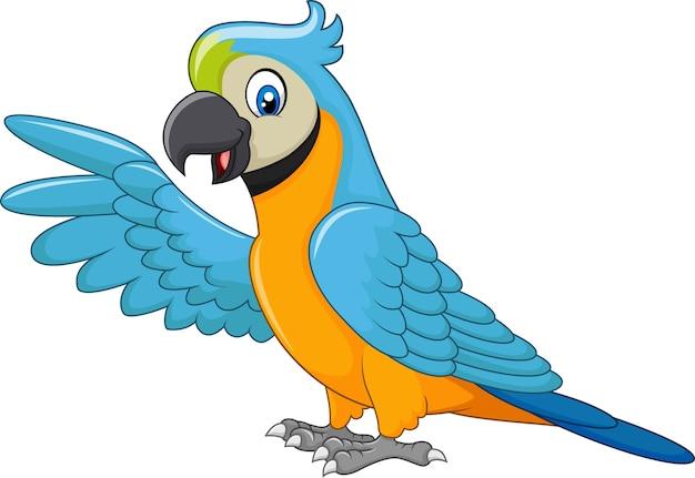 Presentación divertida del macaw de la historieta aislada en el fondo blanco Vector Premium