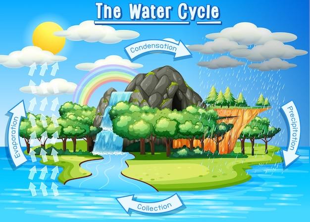Proceso del ciclo del agua en la tierra - científico vector gratuito