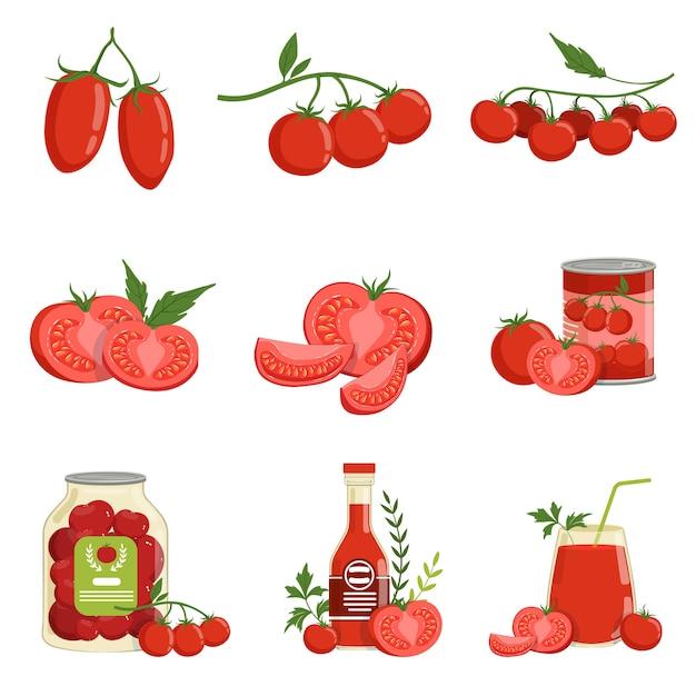 Productos de tomate y tomates sanos rojos frescos conjunto de ilustraciones vectoriales Vector Premium