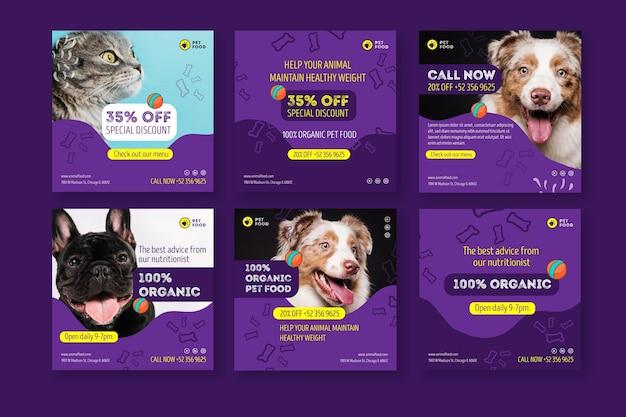 Publicaciones de instagram de comida para animales vector gratuito