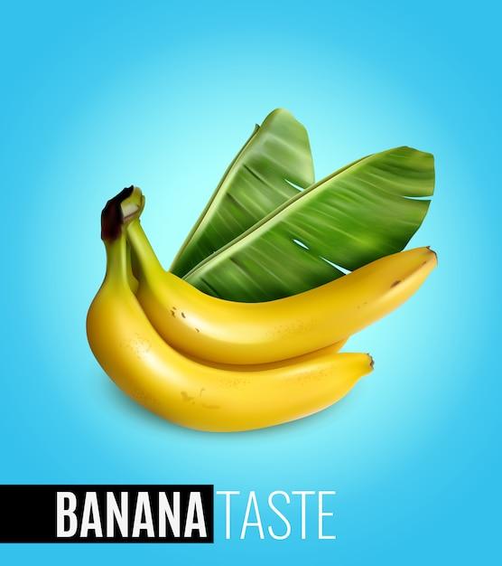 Racimo de plátanos maduros con hoja de palma que anuncia el sabor realista de la comida natural cartel azul vector gratuito