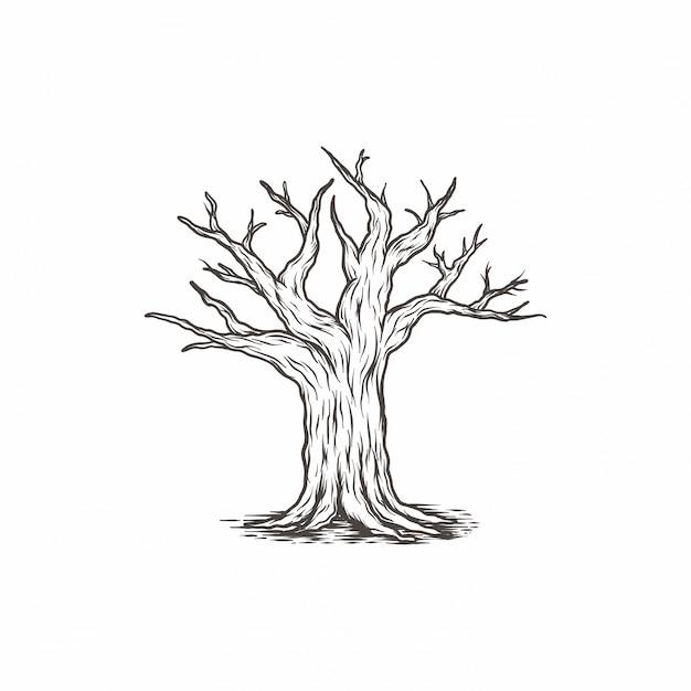 Rama de árbol vintage dibujado a mano Vector Premium