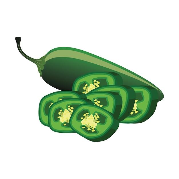 Rebanadas de pimiento jalapeño crudo. ilustración vectorial vector gratuito