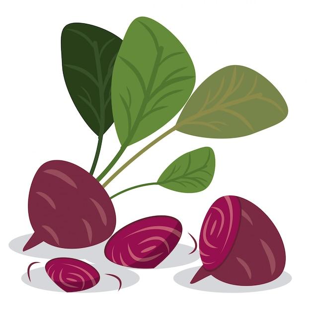 Remolacha vitaminas saludables comida Vector Premium