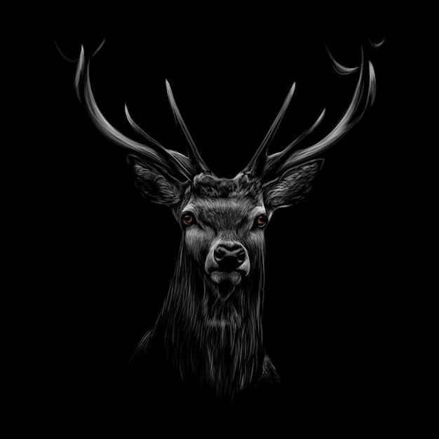 Retrato de una cabeza de ciervo sobre un fondo negro. ilustración vectorial Vector Premium