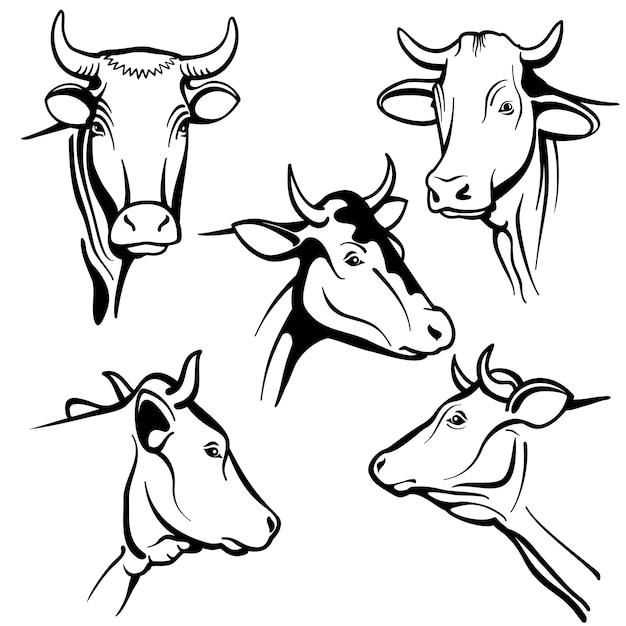 Retratos aislados de cabezas de vacas, caras de ganado para productos lácteos naturales de granja, embalaje Vector Premium