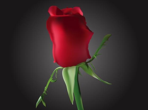 romantic capullo vector hermosa flor descargar vectores gratis