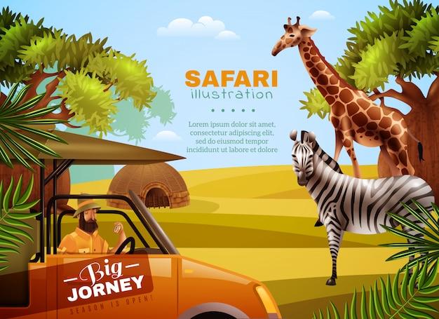 Safari coloreado cartel vector gratuito