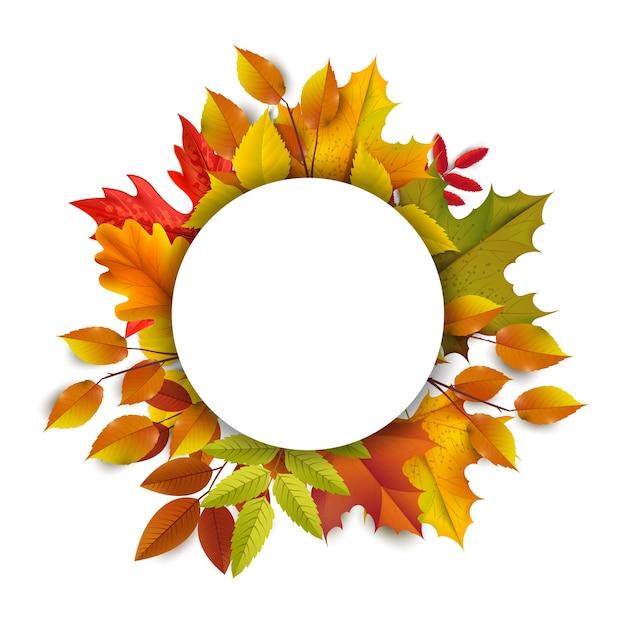 Saludos y regalos por el concepto de temporada otoño y otoño. fondo de otoño, cartel y plantilla de banner con coloridas hojas de otoño. Vector Premium
