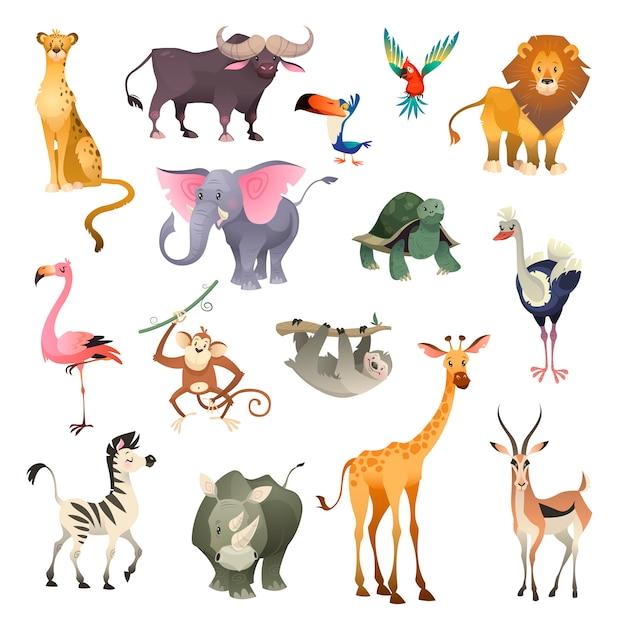 Selva animales salvajes. savannah bosque animal pájaro safari naturaleza áfrica tropical exótico bosque mamíferos marinos, conjunto de dibujos animados Vector Premium