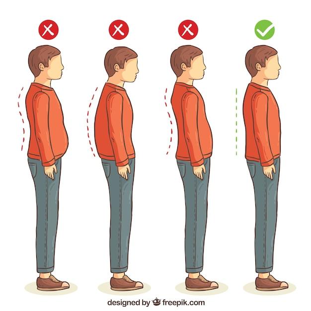 Serie de posturas correctas e incorrectas para la espalda vector gratuito