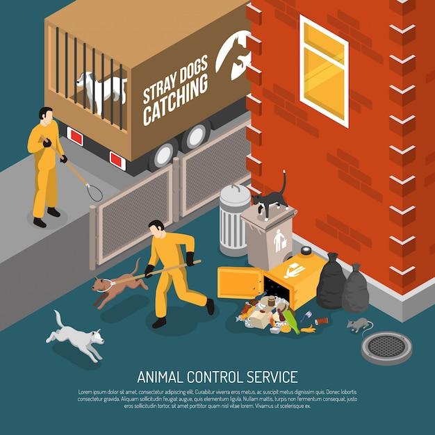 Servicio de control animal isométrico vector gratuito