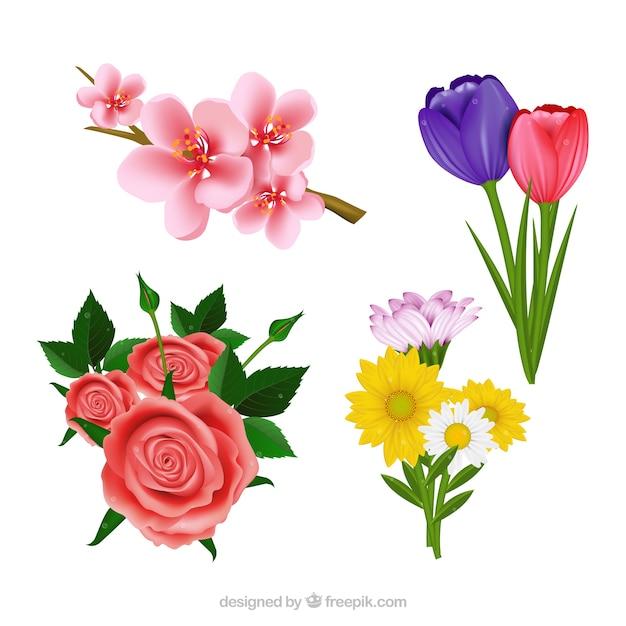 Set De Bonitas Flores Realistas Descargar Vectores Gratis