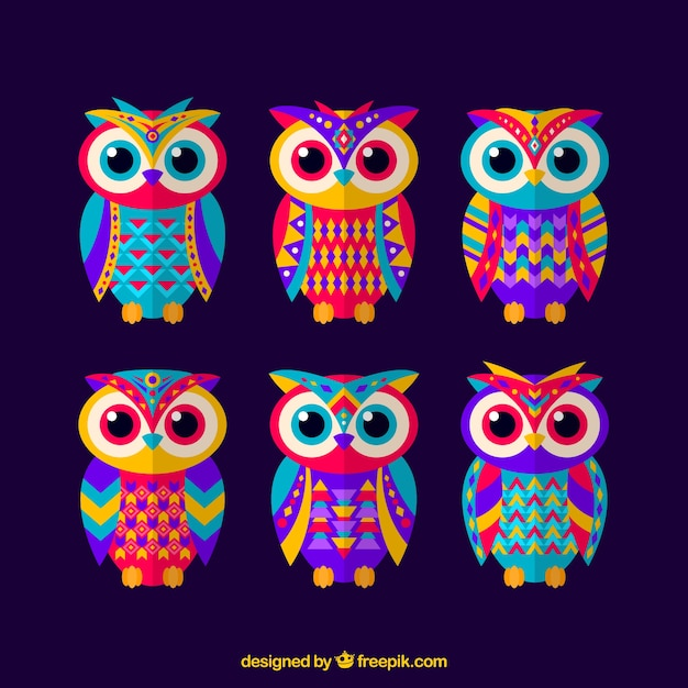 Set de búhos coloridos étnicos  Vector Gratis