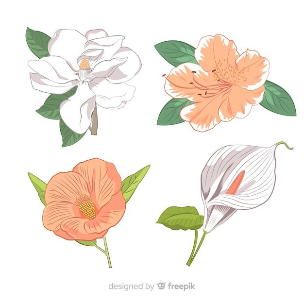 Set de flores y hojas vector gratuito