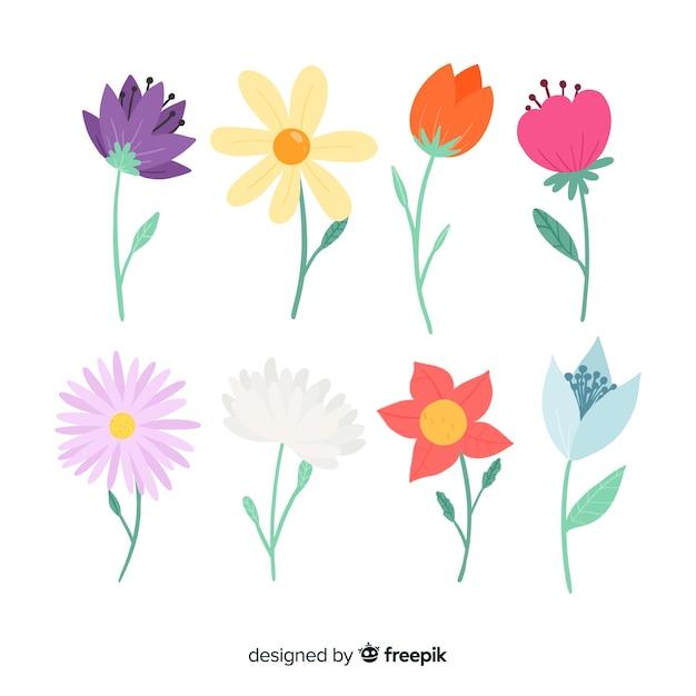 Set de flores vector gratuito