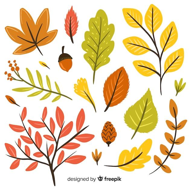Set de hojas de bosque otoñal dibujado vector gratuito