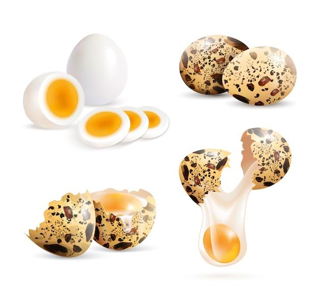 Set de huevos de codorniz realistas vector gratuito