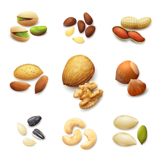 Set de nueces realista vector gratuito