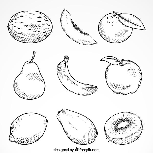 Set de nueve piezas de fruta dibujadas a mano vector gratuito