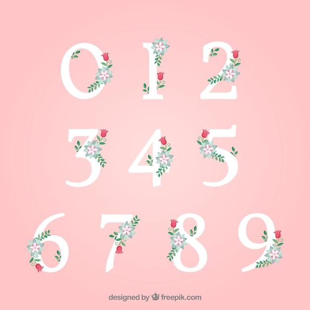 Set de números vector gratuito