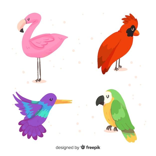 Set de pájaro exótico en acuarela vector gratuito