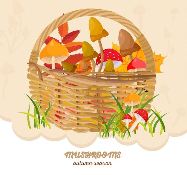 Setas en una cesta cosecha de otoño. vector de plantillas de ...
