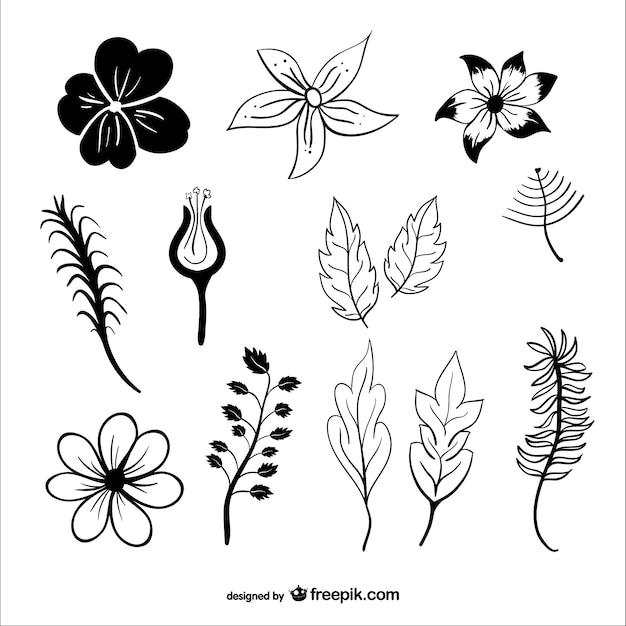 Siluetas de hojas y flores | Descargar Vectores gratis