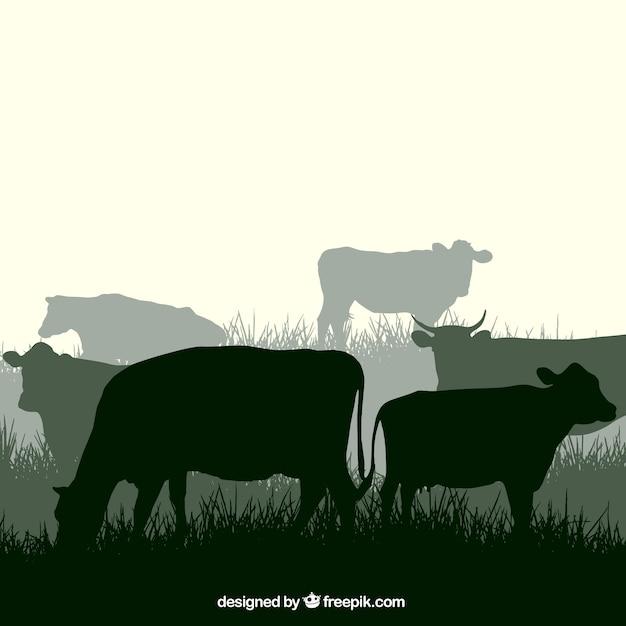 Siluetas vaca Vector Gratis
