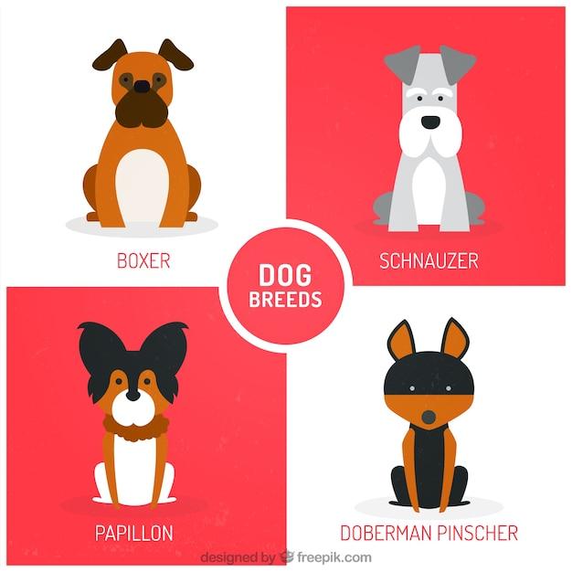 Simpáticas razas de perro vector gratuito