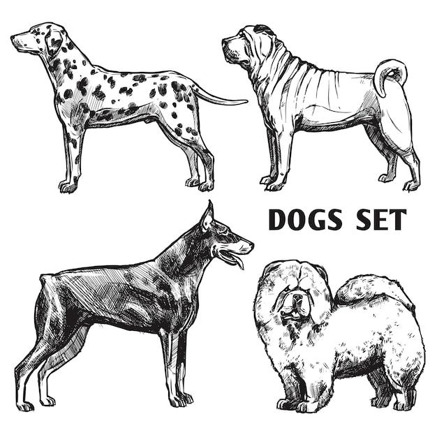 Sketch perros retrato conjunto vector gratuito