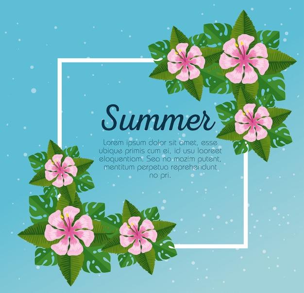 Tarjeta de verano con flores tropicales y hojas vector gratuito