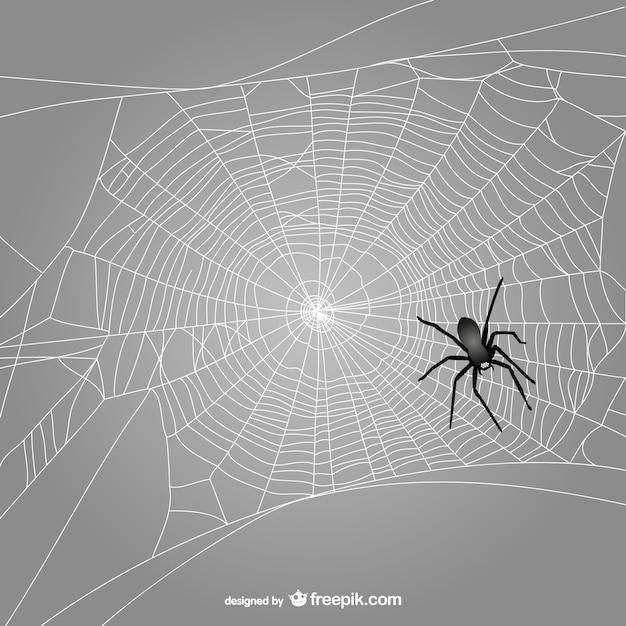 Tela de araña con araña negra vector gratuito
