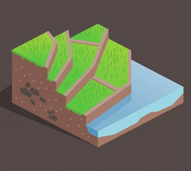 Terraza De Cultivo En Una Colina Vector Premium