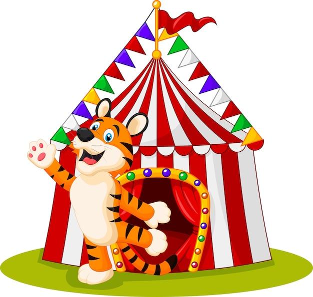 Tigre agitando la mano y la carpa de circo en el fondo blanco Vector Premium