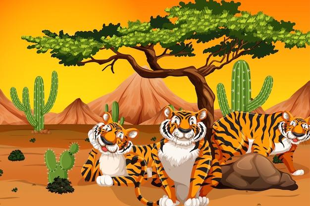 Tigre en el desierto vector gratuito