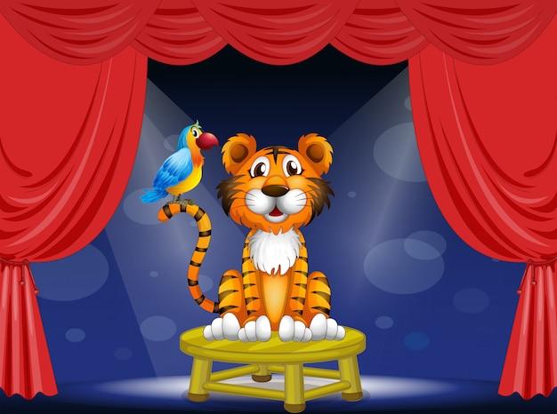 Un tigre y un loro en el circo. vector gratuito