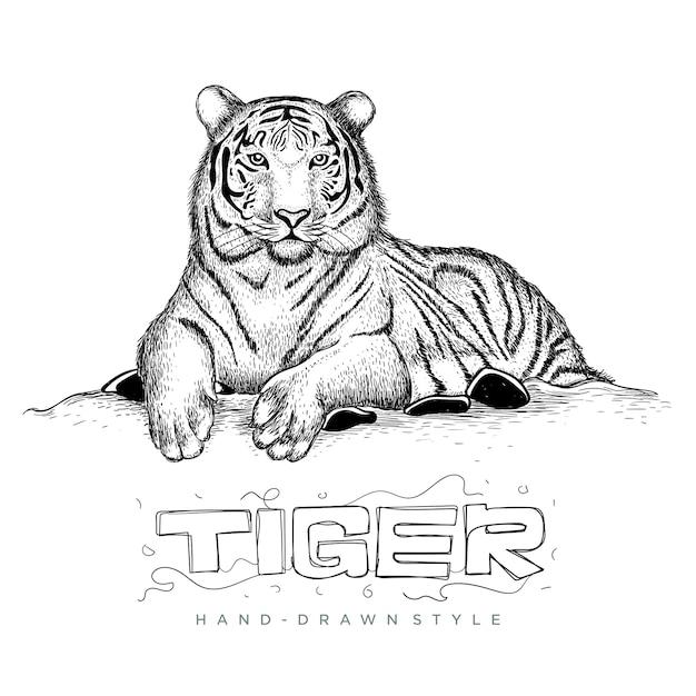 Tigre sentado relajante, ilustración de dibujo a mano animal Vector Premium
