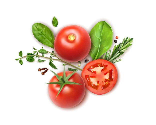 Tomates frescos enteros y rodajas composición realista con albahaca orégano romero hierbas aromáticas clavo especias vector gratuito