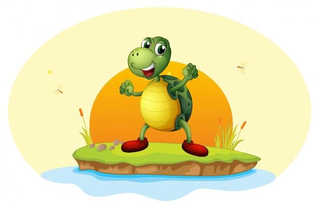 Una tortuga en una pequeña isla. vector gratuito