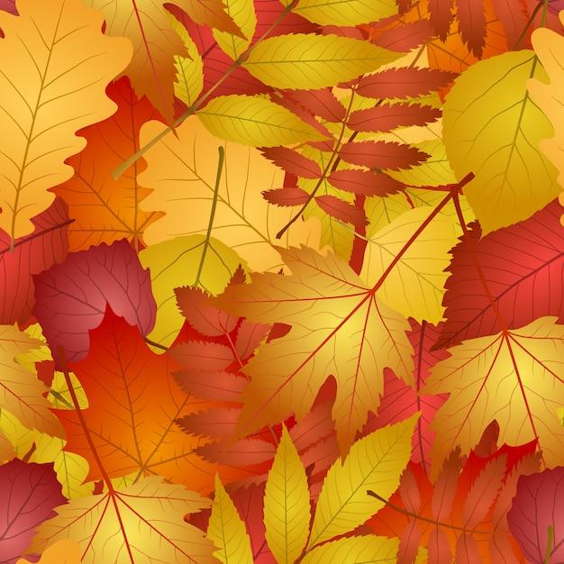 Transparente con hojas de otoño rojas y amarillas. Vector Premium